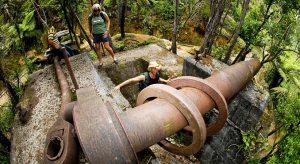 Karangahake Gorge, courtesy Tourism Coromandel